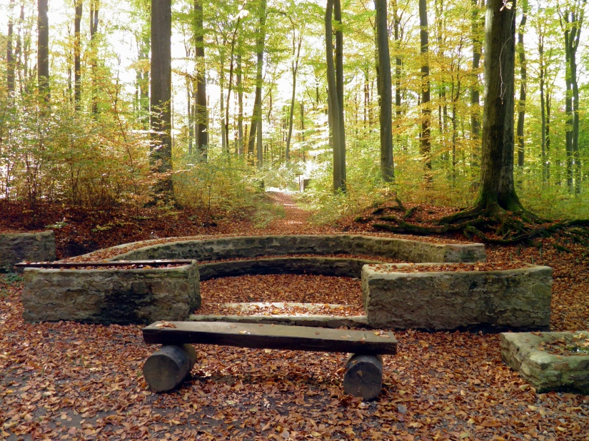 Limeskastell Holzausen, semi-circular apsis of the standard's shrine