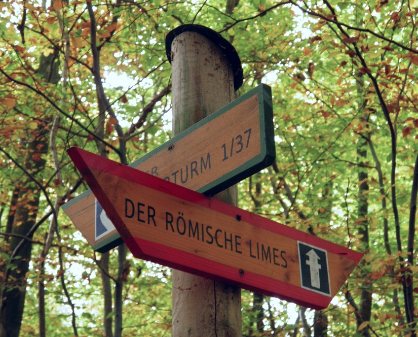 Signposted footpaths in the deep forest