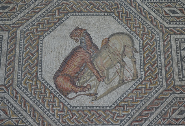 A tiger broughting down a wild ass, the gladiator mosaic at the Roman villa in Nennig, Germany © Carole Raddato