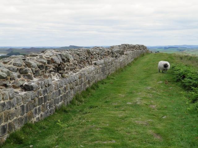 Hadrian Wall, walking east to Milecastle 39 © Carole Raddato