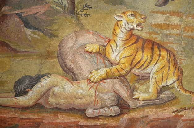 Detail of the Centaur Mosaic; the tiger has managed to bring the female centaur to the ground © Carole Raddato