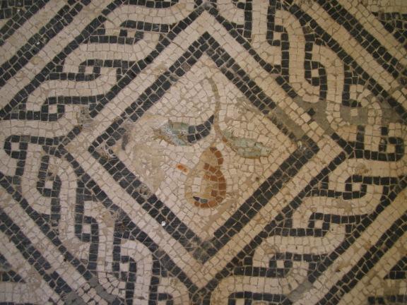 Roman Floor Mosaic - Pear © LiMarMu