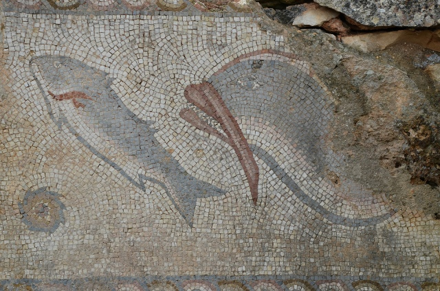 Detail of mosaic on the podium wall in the water sanctuary depicting a dolphin, fish and mollusc, Roman Ruins of Milreu, a luxurious rural villa transformed into a prosperous farm in the 3rd century, Portugal © Carole Raddato