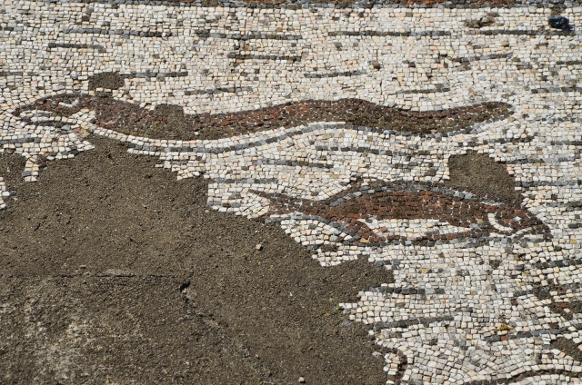 Mosaic floor depicting a fish and eel, Roman Villa of Pisões, Lusitania, Portugal © Carole Raddato