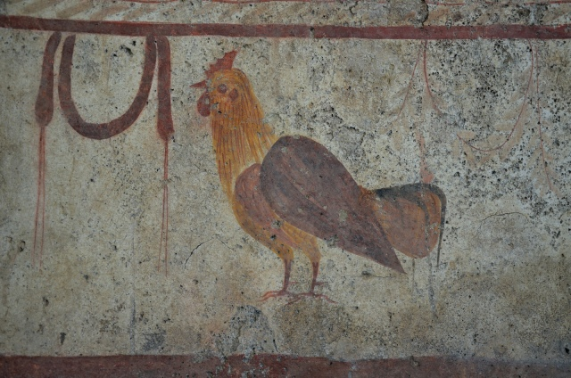 Lucanian fresco tomb painting of a rooster, about 350 BC, Paestum Archaeological Museum