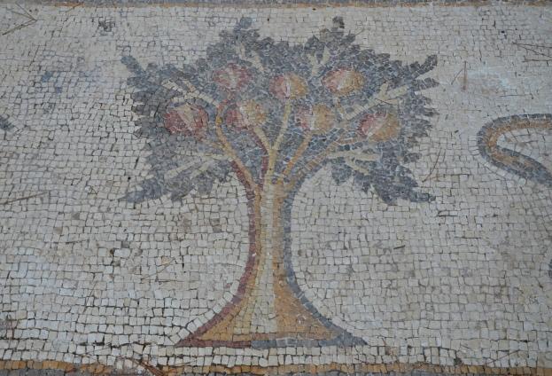 A pomegranate tree, detail from the 6th century AD Bird Mosaic, Israel © Carole Raddato