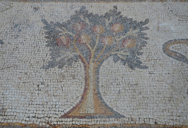A pomegranate tree, detail from the 6th century AD Bird Mosaic, Israel © Carole Raddato