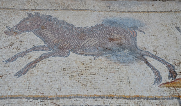 A wild boar, detail from the 6th century AD Bird Mosaic, Israel © Carole Raddato