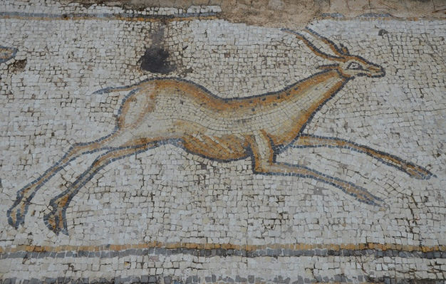 A gazelle, detail from the 6th century AD Bird Mosaic that adorned the atrium of a large palace complex outside the city wall of Byzantine Caesarea, Caesarea Maritima, Israel © Carole Raddato