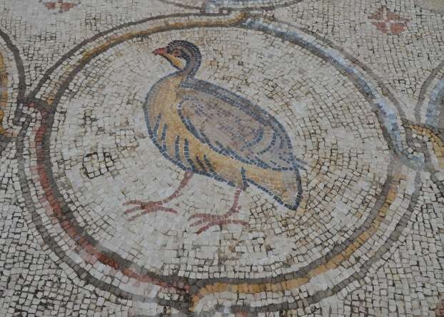 A pelican, detail from the 6th century AD Bird Mosaic, Israel © Carole Raddato