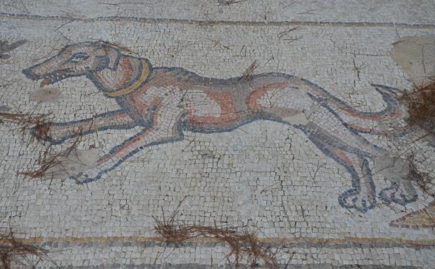 A dog, detail from the 6th century AD Bird Mosaic, Caesarea © Carole Raddato