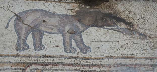 An elephant, detail from the 6th century AD Bird Mosaic, Caesarea © Carole Raddato