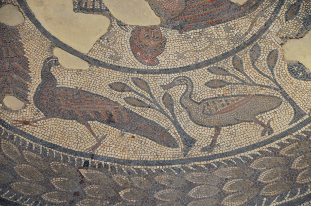 The 4th century AD Orpheus Mosaic, detail of a peacock and duck, Corinium Museum, Cirencester Carole Raddato CC BY-SA