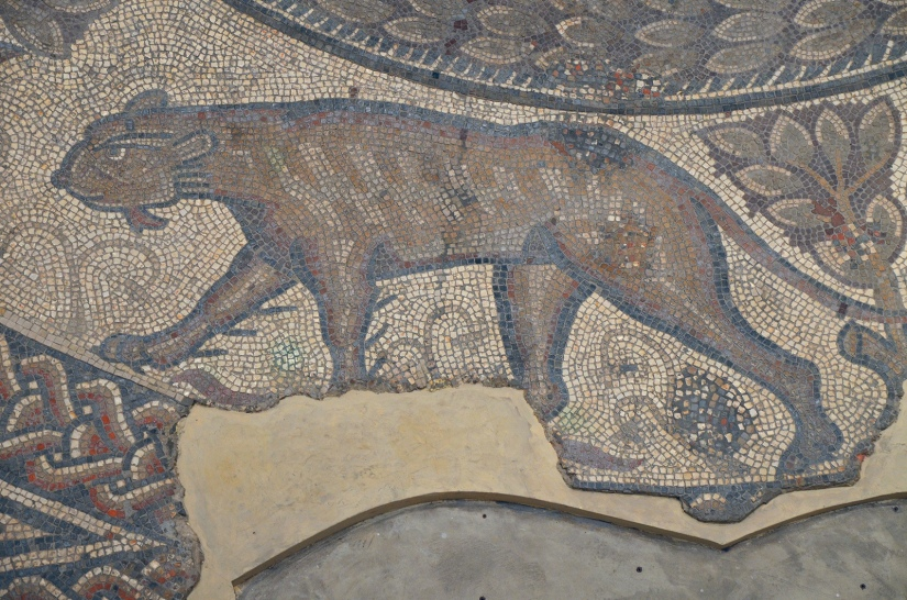 The 4th century AD Orpheus Mosaic, detail of a feline, Corinium Museum, Cirencester Carole Raddato CC BY-SA