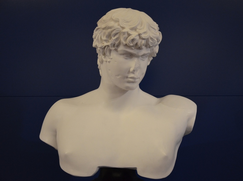 Cast in plaster re-creating the appearance of the original bust of Antinous.