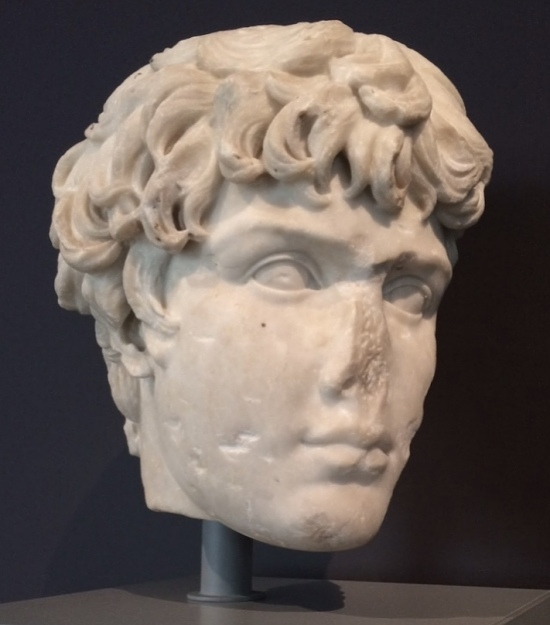 Fragment of a marble head of of Antinous in the collection of the Art Institute of Chicago.